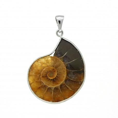 Pendentif Ammonites fossilisées
